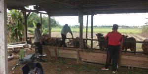 Anggota Polsek Aimas Sambangi Posko Kampung Tangguh Kampung Maklalut