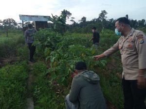Anggota Polsek Moraid Melaksanakan Patroli Ke Kampung Yabanonti Berdikari Metnayam Distrik Yembun