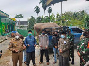 Kunjungan kerja Gubernur Papua Barat bapak Drs. Dominggus Mandacan dalam rangka Penyerahan Hewan Qurban dalam rangka hari Raya Idul Adha 1442 H